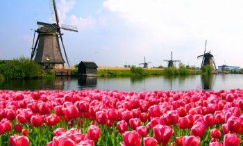 Par darbu Nīderlandē